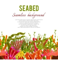 Coral seabed background vector