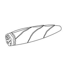cigar twisted tobacco leaf smoldering cigar vector image