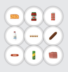 Flat icon meal set of bottle ketchup smoked vector