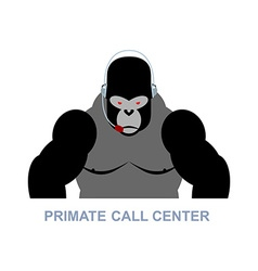 Primate call center monkey and headset gorilla vector