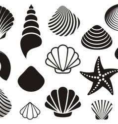 Sea shells and starfish vector