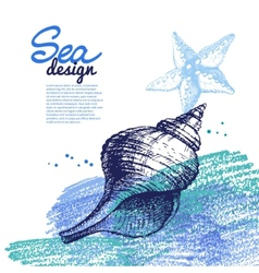 Seashell background Sea nautical design vector image