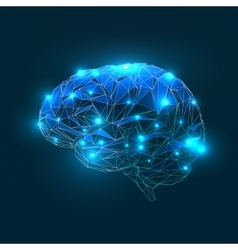 Brain geometric shapes blue colors vector