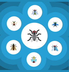 Flat icon buzz set of bluebottle housefly tiny vector