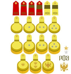 Shoulder straps and epaulettes Russian Navy vector image vector image