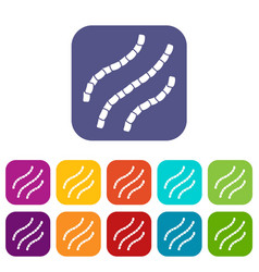 Escherichia coli icons set vector