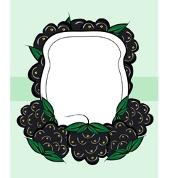 Hand drawn labels berry blackberry vector