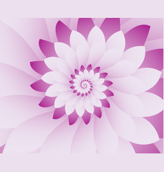 Abstract pink and white floral design background vector