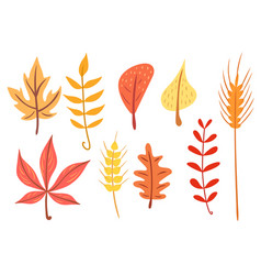 Simple flat autumn leaves set vector