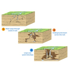 Cave formation vector