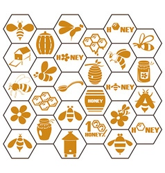 icons bee and honey in comb vector image