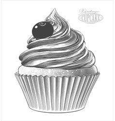 Cupcake in engraving style vector image vector image