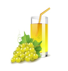 Grapes juice isolated on white vector image vector image