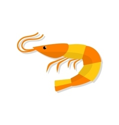 Shrimp flat isolated vector image
