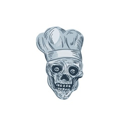 Skull chef cook drawing vector