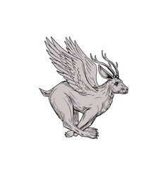wolpertinger running side drawing vector image vector image