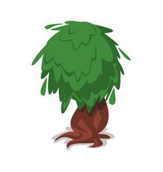 green old oak vecor icon vector image vector image
