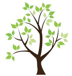 leaf tree vector image