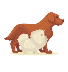 dog breed collection vector image vector image