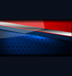 usa backgrounds style vector image