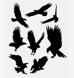 Eagle flying silhouettes vector image vector image