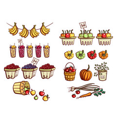 farmers market vegetables and fruits vector image