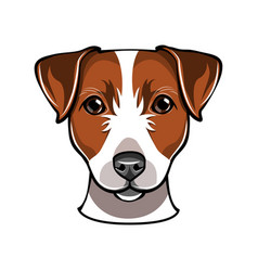 Jack russell dog vector