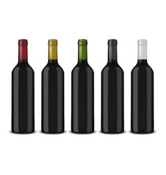 Set 5 realistic black bottles of wine vector