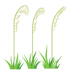 three plants icon cartoon style vector image vector image