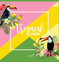 Tropical fruits flowers and toucan birds banner vector