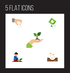 Flat icon seed set of sow seed care and other vector