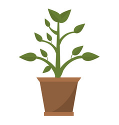Pot plant garden image vector