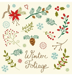 Winter foliage vector image