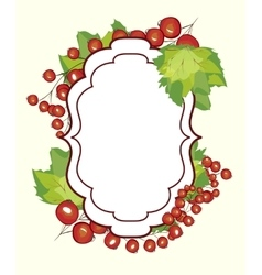 Hand drawn label berry currants vector