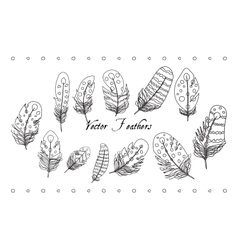 Feather Line Set vector image vector image
