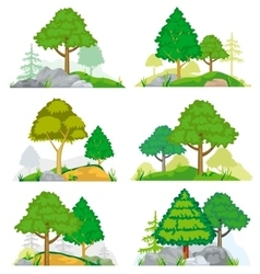 Landscapes with coniferous and deciduous trees vector