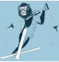 Monkey skier vector