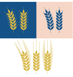wheat and barley icon vector image