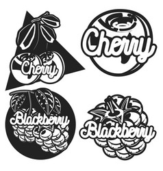 color vintage fruit emblems vector image