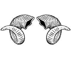 Ram on ram horns vector