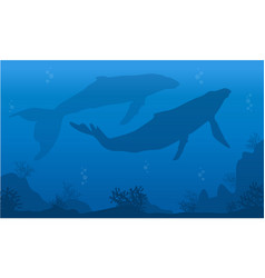 Silhouette of two whale on blue sea vector