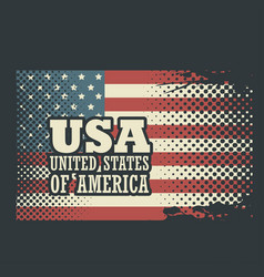 united states design vector image