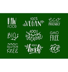 Hand sketched badges and labels with vegetarian vector