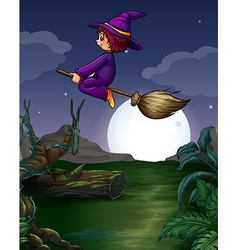 Witch flying vector image