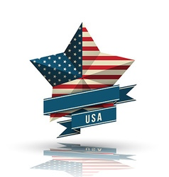 USA star in national flag vector image