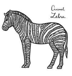 Stylized zebra zentangle isolated on white vector