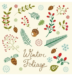 Winter foliage set vector image