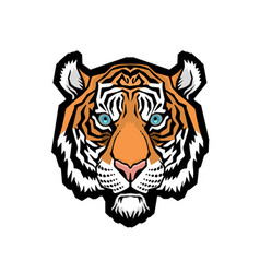 a tiger head vector image vector image
