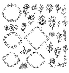 flowers and leaves frame vector image vector image