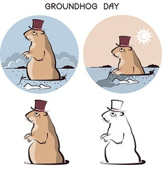 Groundhog day animal symbol of marmot on white vector image
